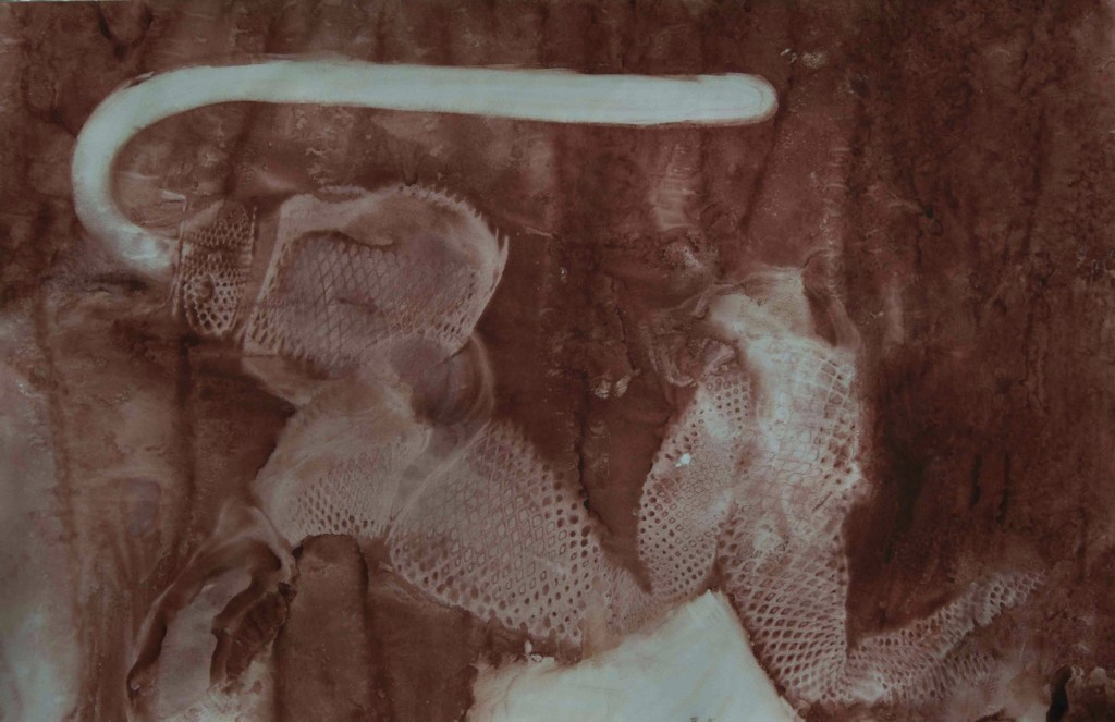 Hadovec s lyží